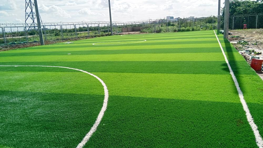 Thi công cỏ nhân tạo sân bóng đá