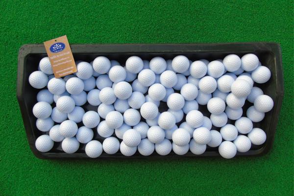 Bóng golf đựng trong khay