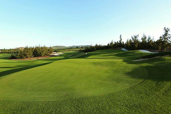 Những hố golf ấn tượng tại sân golf FLC Quy Nhơn
